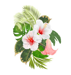 Tropical flowers floral arrangement vector