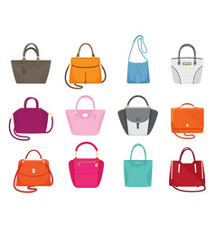 Women handbags collection fashionable set vector