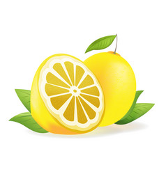 Yellow lemon fresh isolate fruit vector