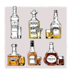 set of bottles with alcohol and stemware vector image vector image