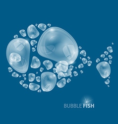 Bubble Fish on Blue Background vector image
