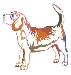 Colorful decorative standing portrait of beagle vector