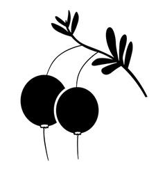 Cranberries vector