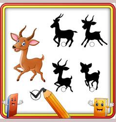 find the correct shadow cartoon funny impala posi vector image