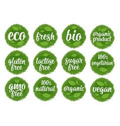 gluten lactose sugar gmo free lettering sign vector image