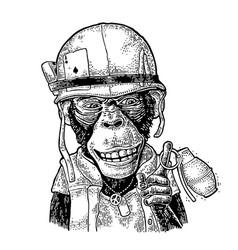Monkey in soldier helmet holding grenade vintage vector