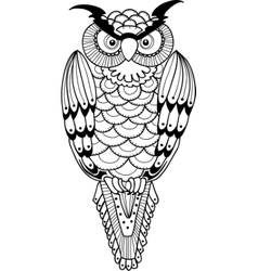 night owl vector image