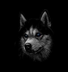 Portrait of the head of the siberian husky with vector
