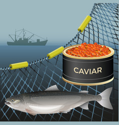 Salmon fish set vector