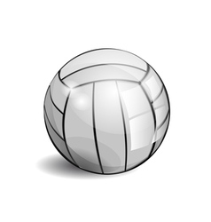 shiny volleyball vector image