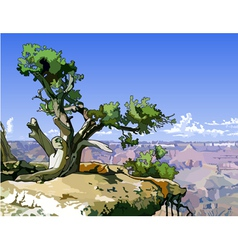 Tree on a rocky ledge above canyon vector