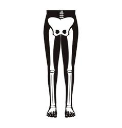 half body silhouette system bone with leg bones vector image