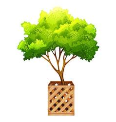 A decorative green plant vector