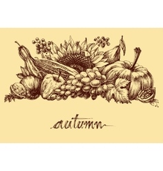 Autumn fruits and vegetables abundance Fall vector