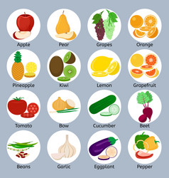 fruits and vegetables on circles vector image