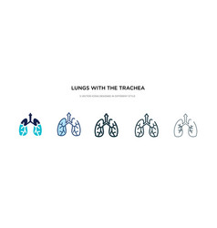 Lungs with trachea icon in different style vector