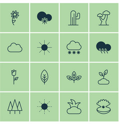 Set of 16 harmony icons includes plant cactus vector