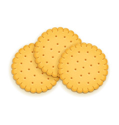 Three delicious round biscuit vector