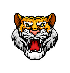 Tiger roaring head muzzle mascot icon vector
