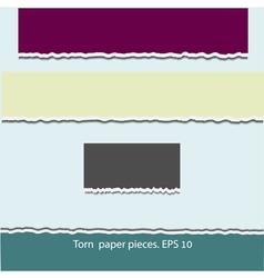Torn paper pieces vector