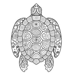 zendoodle stylize beautiful turtle vector image