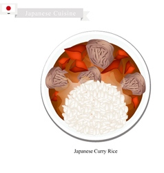 Japanese Curry Rice with Meat and Vegetables vector image