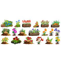 Large set colorful flowers on rocks and wood vector