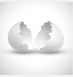 White opened easter with shell broken isolated vector