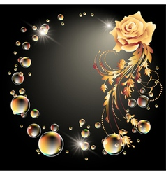 Rose star and bubbles vector image