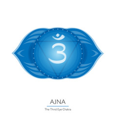 ajna - chakra of human body vector image