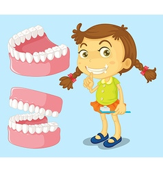 Little girl with clean teeth vector image vector image