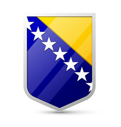 Coat of arms of bosnia and herzegovina vector