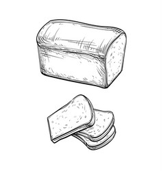 fresh toast bread vector image