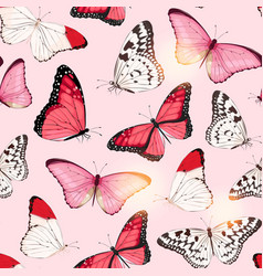 pattern with high detailed tropic butterfly vector image