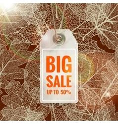 Autumn seasonal sale label EPS 10 vector image vector image