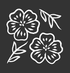 Blue flax plant chalk icon linen wild flower vector