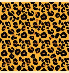 pattern skin leopard vector image