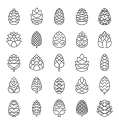 Pine cone botanical icons set outline style vector