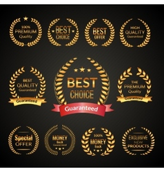 Premium laurel wreath set vector image vector image