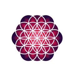 Purple Flower of Life vector image vector image