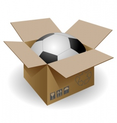 Ball in the box vector