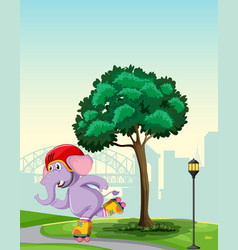 elephant playing roller skate in park vector image