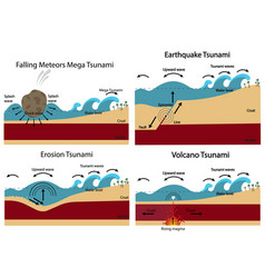 Establishment of tsunami vector