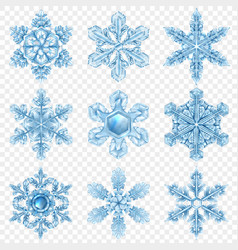 realistic snowflake icon set vector image