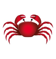 single crab icon image vector image