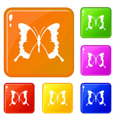 Swallowtail butterfly icons set color vector