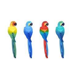 Tropical bird isolated vector