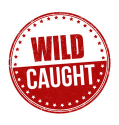 Wild caught sign or stamp vector