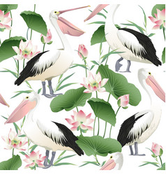 seamless pattern with graceful pelicans vector image vector image