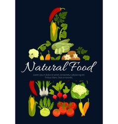 Natural vegetarian vegetables food poster vector image vector image